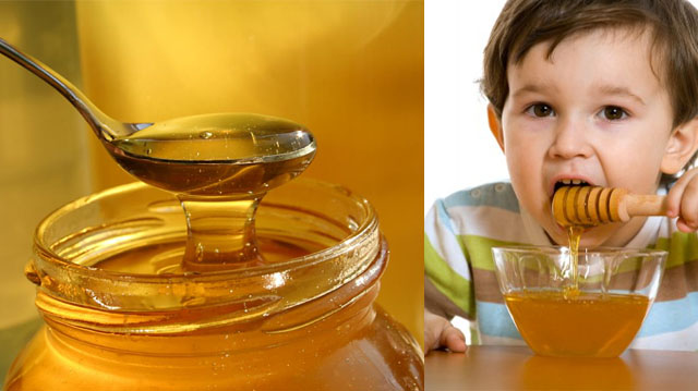 თაფლი და ვავშვი