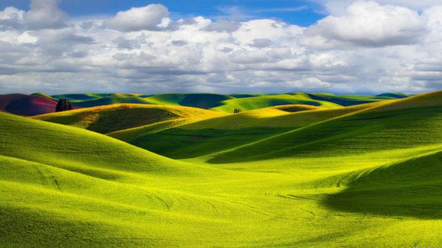 მიწა მიწა მიწა