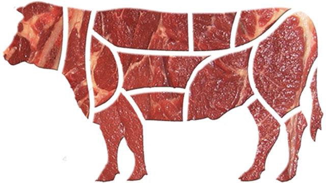 ხორცი ხორცი ხორცის ხორცი
