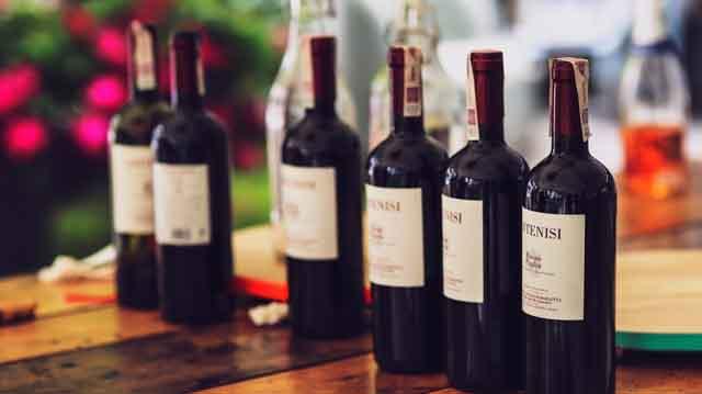ღინო ღვინო ლკაჯდლკფ