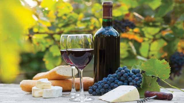 ღვინო ღვინო ლკაჯდლფკ