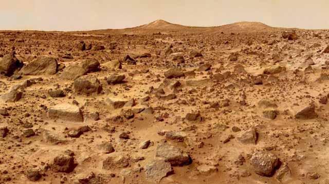 მარსისა და მთვარის ანალოგიურ ნიადაგში წიწმატი, ბოლოკი და შვიდი სხვა მცენარე გაზარდეს