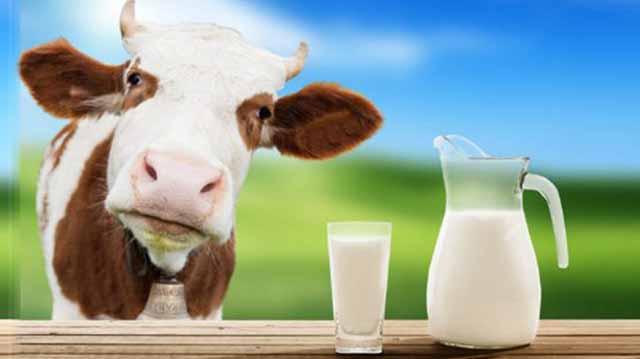 რძე რზე დლაკდჯფლაკსდჯფ