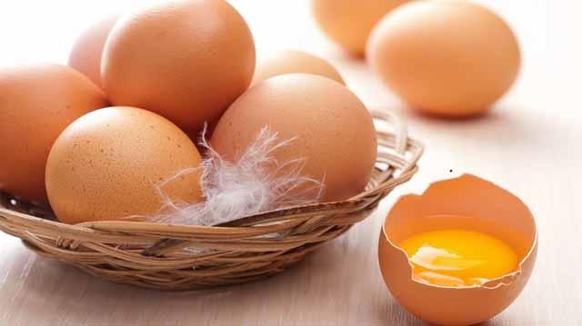 კვერცხი კვერცხი
