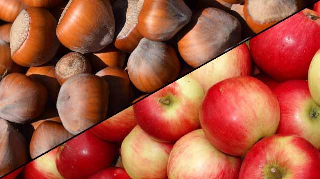 თხილი ვაშლი
