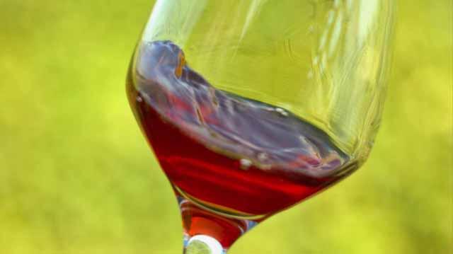 ქარტვული ღვინის პროგრამ